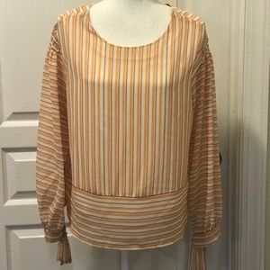Long sleeved stripe chiffon blouse